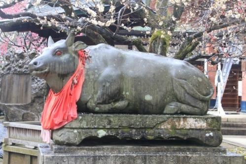 北野天満宮の臥牛像(赤目)