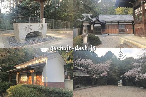 八幡神社の見どころ(手水舎・社務所・トイレ・桜)