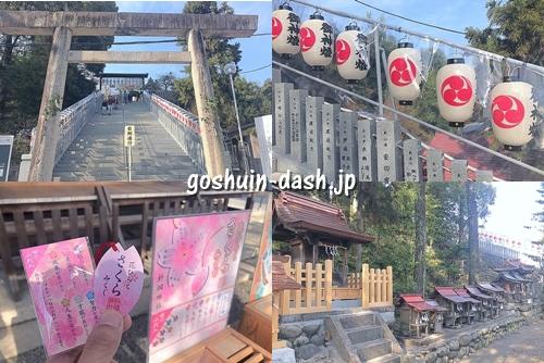 針綱神社見どころ(参道の階段・神紋柄の提灯・桜おみくじ・末社)