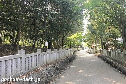 野鳥の杜(針名神社)