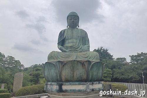 新生大仏(犬山成田山)