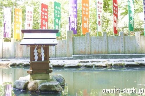 大縣神社(愛知県犬山市)むすひ池