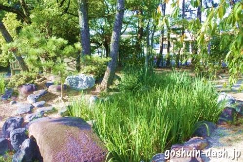 明治の神池(菖蒲・刈谷市原稲荷神社)
