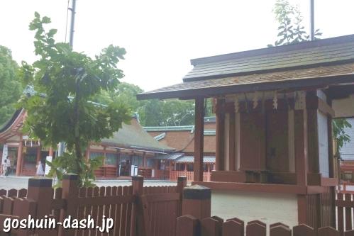 柏樹社(津島神社摂社)