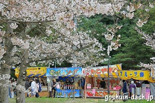 亀城公園(愛知県刈谷市)桜まつり