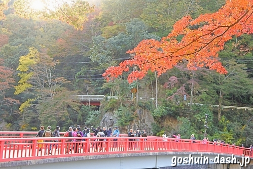 香嵐渓(愛知県豊田市)の紅葉と待月橋
