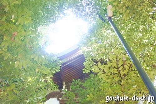 萱津神社(愛知県あま市)本殿