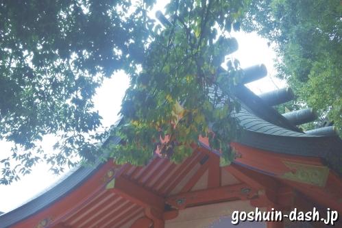 金神社(岐阜市)本殿