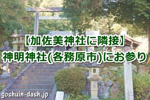 神明神社(岐阜県各務原市蘇原古市場町)