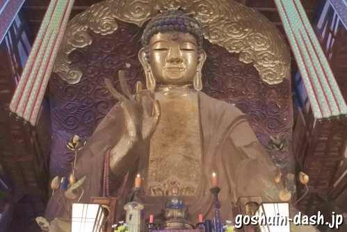 岐阜大仏(黄檗宗金鳳山正法寺)