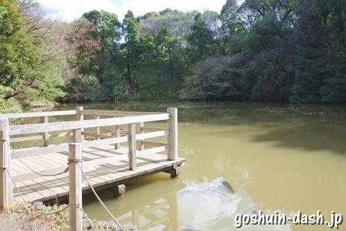 明治神宮御苑(東京都渋谷区)南池と御釣台