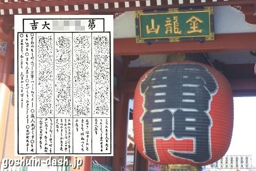 浅草寺(東京都台東区)の雷門とおみくじ
