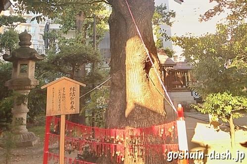三輪神社(名古屋大須)縁結びの木(御神木)