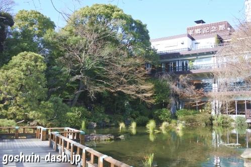 東郷神社(東京都渋谷区)神池と東郷記念館