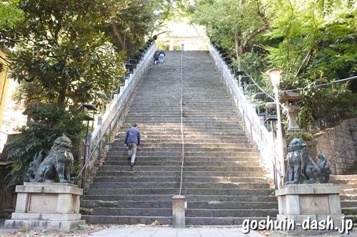 愛宕神社(東京都港区)出世の石段