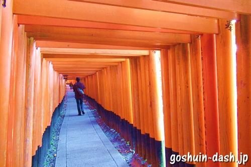 伏見稲荷大社(京都市伏見区)の千本鳥居